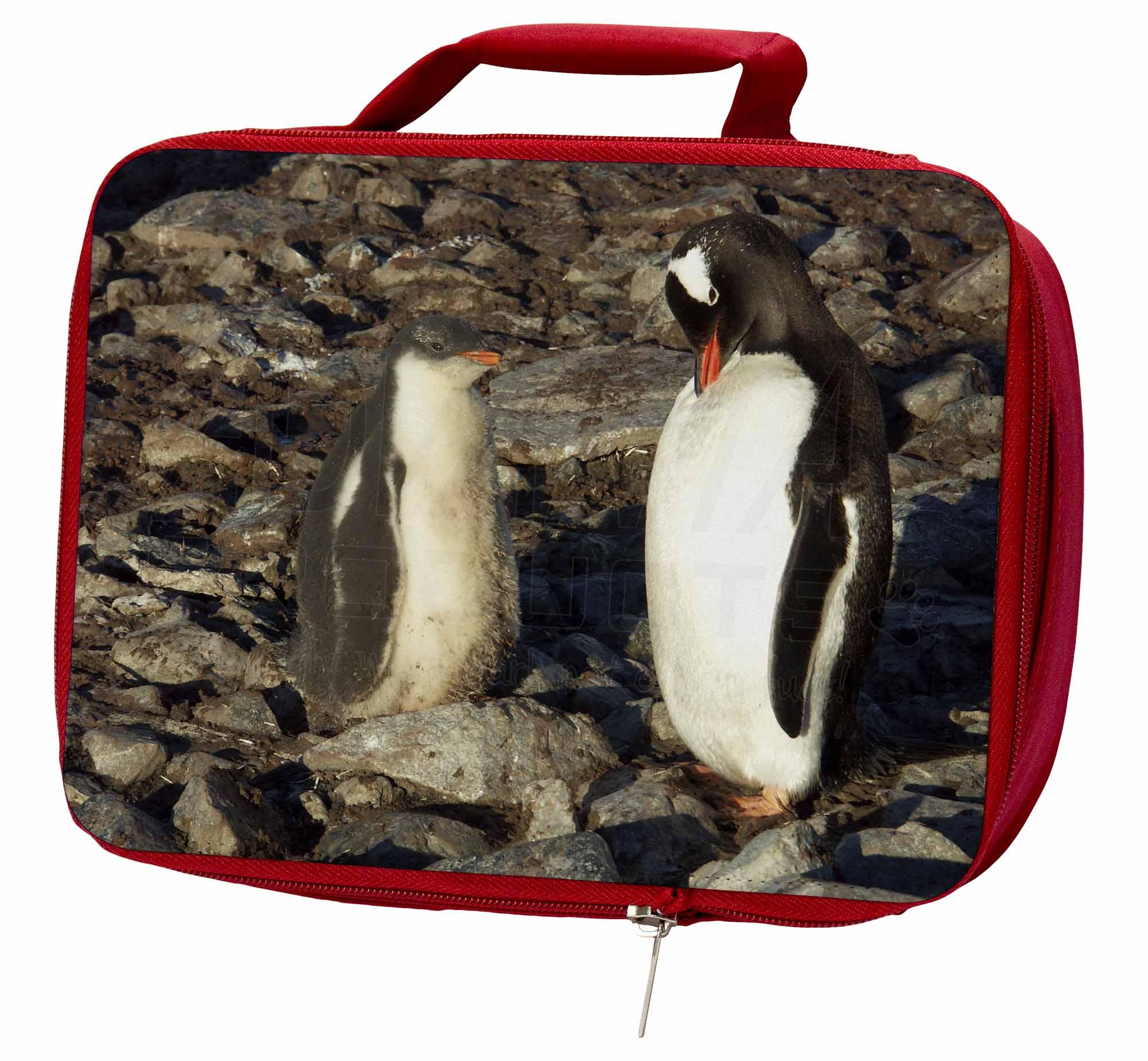 Pingouin sur des Galets Rouge Isolé Boîte Déjeuner, AB-85LBR