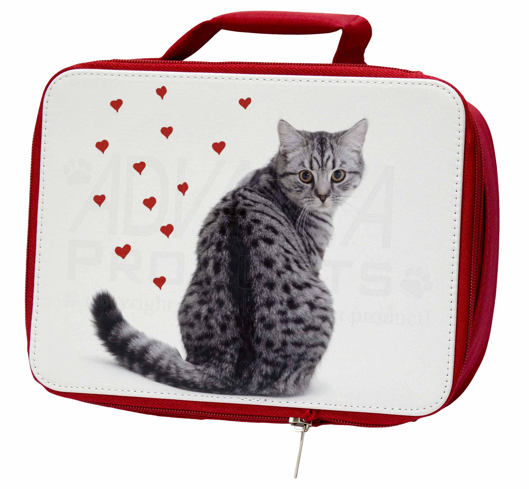 AC-140LBR Silver Tabby Cat with Red Hearts Insulated Red School Lunch Box//Picni
