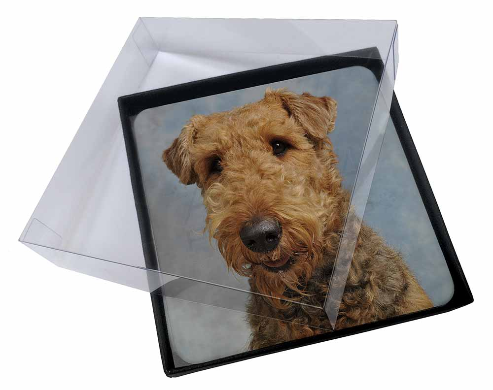 Airedale Terrier Image Black Leather Keyring in Gift Box