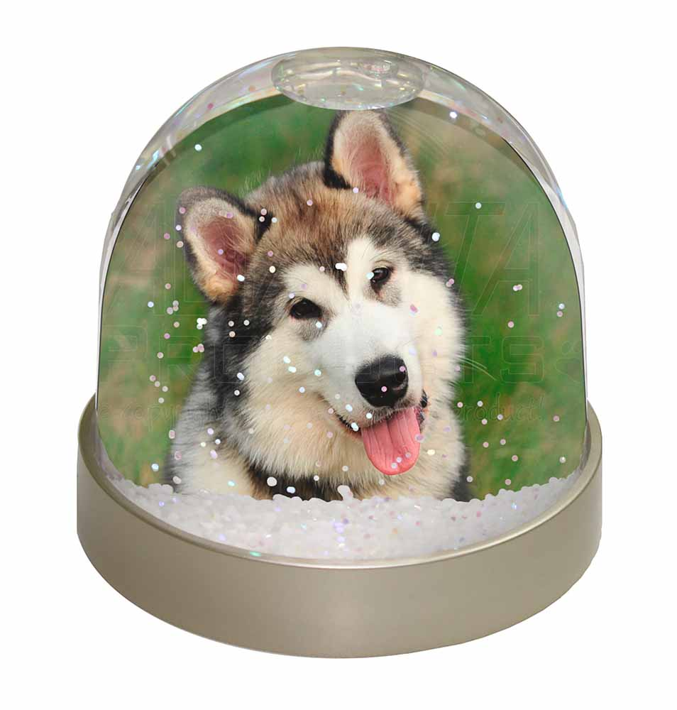 AD-LE1GL Blonde Leonberger Dog Photo Snow Globe Waterball Stocking Filler Gift