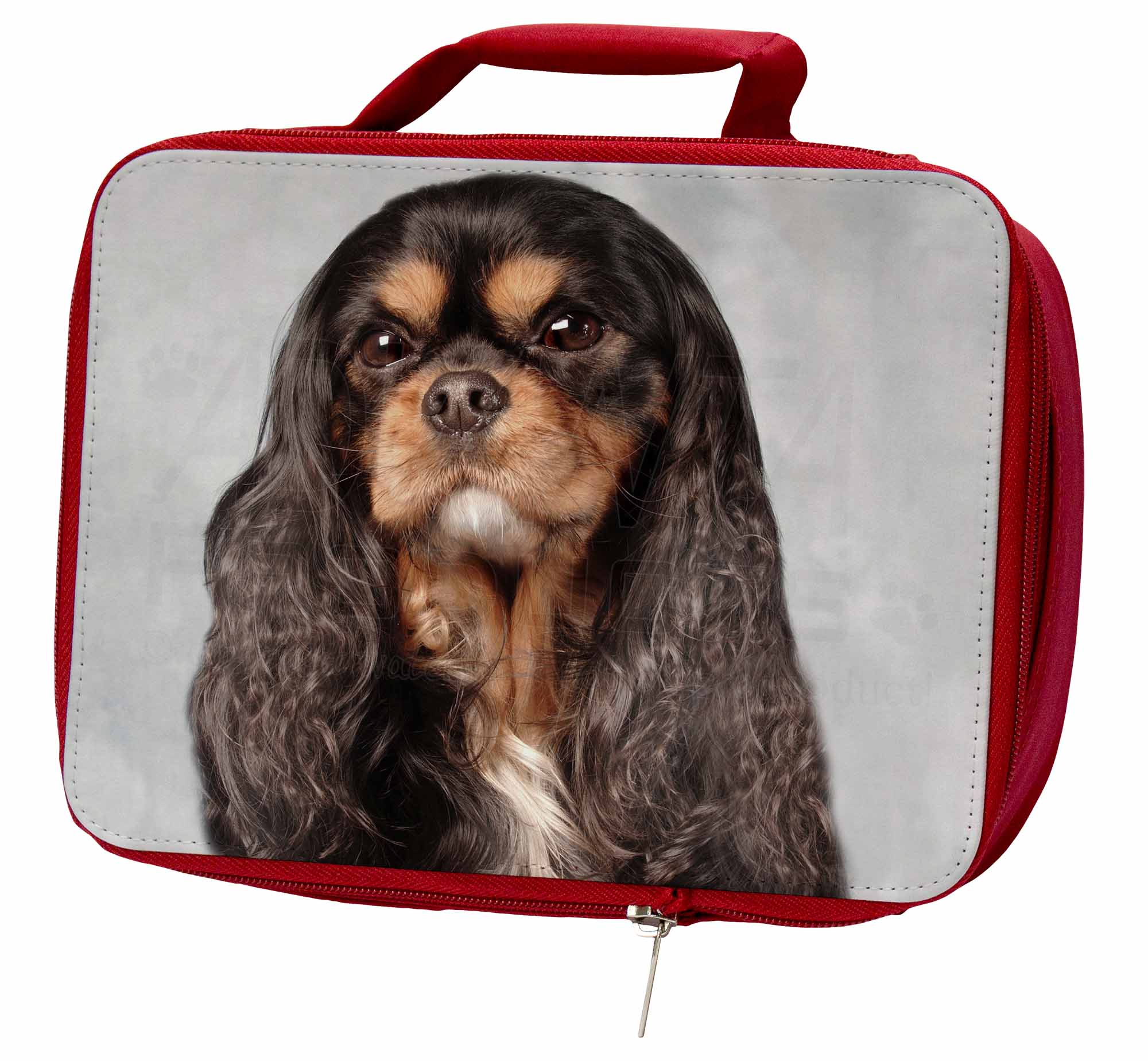 Black and Tan King Charles Spaniel Insulated Red School Lunch Box//Pi AD-SKC2LBR