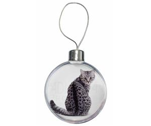 Click to see all products with this Silver Spotted Tabby Cat.