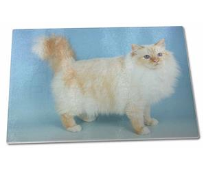 Red Birman Cat, AC-92