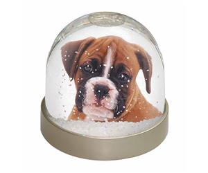 Red and White Boxer Puppy, AD-B43