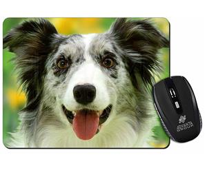 Click to see all products with this Blue Merle Border Collie