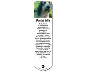 Bearded Collie Dog, AD-BC54