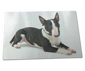 Bull Terrier Dog, AD-BUT2