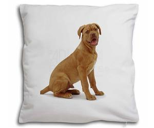 Click to see all products with this Dogue De Bordeaux