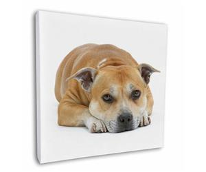 Click image to see all products with this Red Staffordshire Bull Terrier.