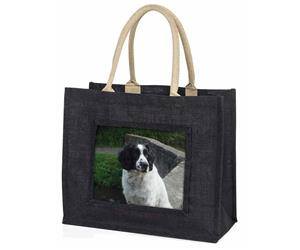 Black and White Springer Spaniel, AD-SS4