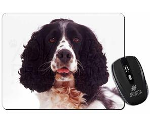 Black and White Springer Spaniel, AD-SS7