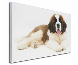 Click Image to See the Different St. Bernard Dogs & All Different Products Available