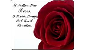 Click image to see all products with this Mothers Day Rose.