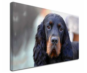 Click Image to See the Different Setters Dogs & All Different Products Available