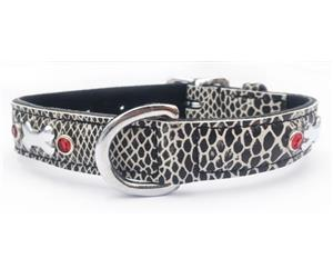 Click image to see all Black Leather Pet Collars.