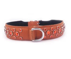 Click image to see all Orange Leather Pet Collars.