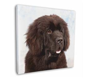 Click image to see all products with this Newfoundland.