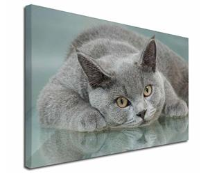Click on Image to See Many Different 