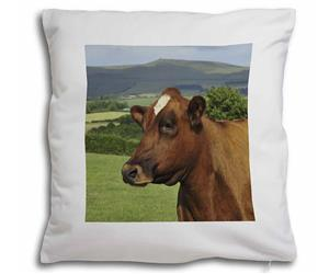 Click Image to See All the Different Cows & Bullock Products in this Section