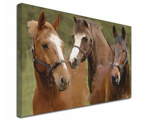 Click Image to See All Horses & Stallion Images & Products in this Section