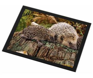 Click Image to See All Hedgehog Images & Products in this Section