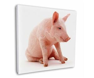 Click Image to See All the Cute Pigs and Products in this Section