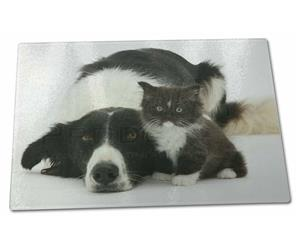 Click to see all products with this Border Collie and Kitten