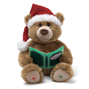 2012 Personalised Animated Story Bear