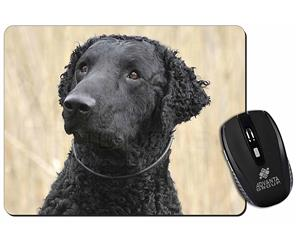 Click to see all products with this Curly Coat Retriever