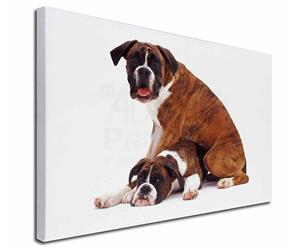 Click Image to See All the Many Different Boxer Dogs & All the Different Products Available