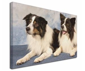 Click Image to See 32 Different Border Collies & 38 Different Products for Each Image