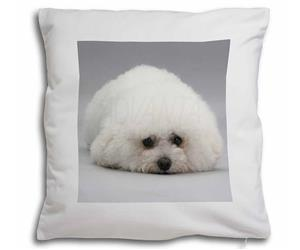 Click Image to See the Different Bichon Frise Dogs & All Different Products Available