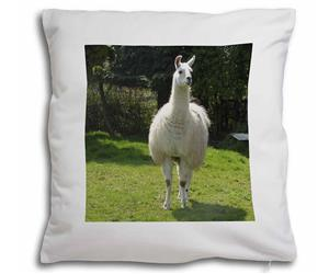 Click to see all products with this Llama.