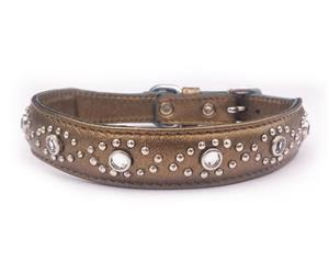 Click image to see all Bronze Leather Pet Collars.