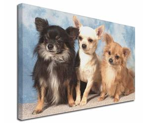 Click Image to See the Different Chihuahua Dogs & All Different Products Available