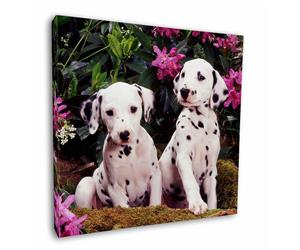 Click Image to See the Different Dalmatiians & All the Different Products Available