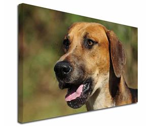 Click Image to See All the Different Products Available with this Foxhound