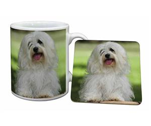 Click Image to See All the Different Products Available with this Havanese