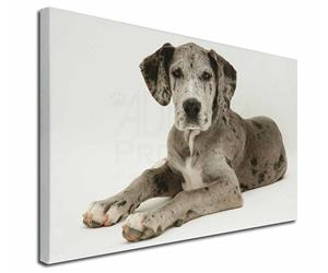 Click Image to See the Different Great Dane Dogs & All Different Products Available