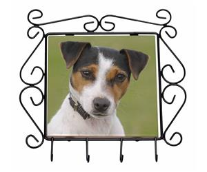 Click Image to See All the Many Different Jack Russell Dogs & All Different Products Available
