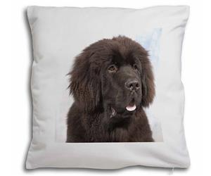 Click Image to See All the Different Products Available with this Newfoundland