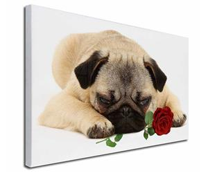 Click Image to See the Different Pug Dogs & All the Different Products Available