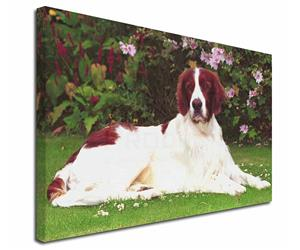 Click Image to See All the Different Products Available with this Irish Setter