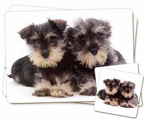 Click Image to See the Different Schnauzer Dogs & All Different Products Available
