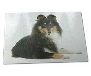 Click Image to See All the Many Different Sheltie Dogs & All Different Products Available