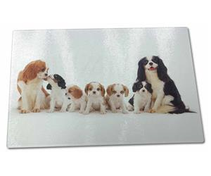 Click Image to See the Different King Charles Dogs & All the Different Products Available