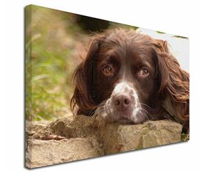 Click Image to See All the Many Different Springer Spaniel Dogs & All Different Products Available
