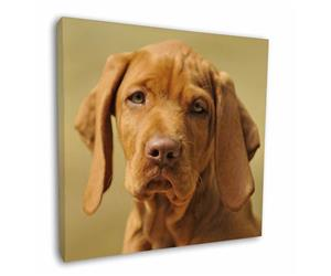 Click Image to See the Different Vizsla Dogs & All the Different Products Available