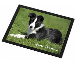 "Border Collie Dog ""Yours Forever..."""