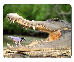 Nile Crocodile and Bird in Mouth, AR-C2
